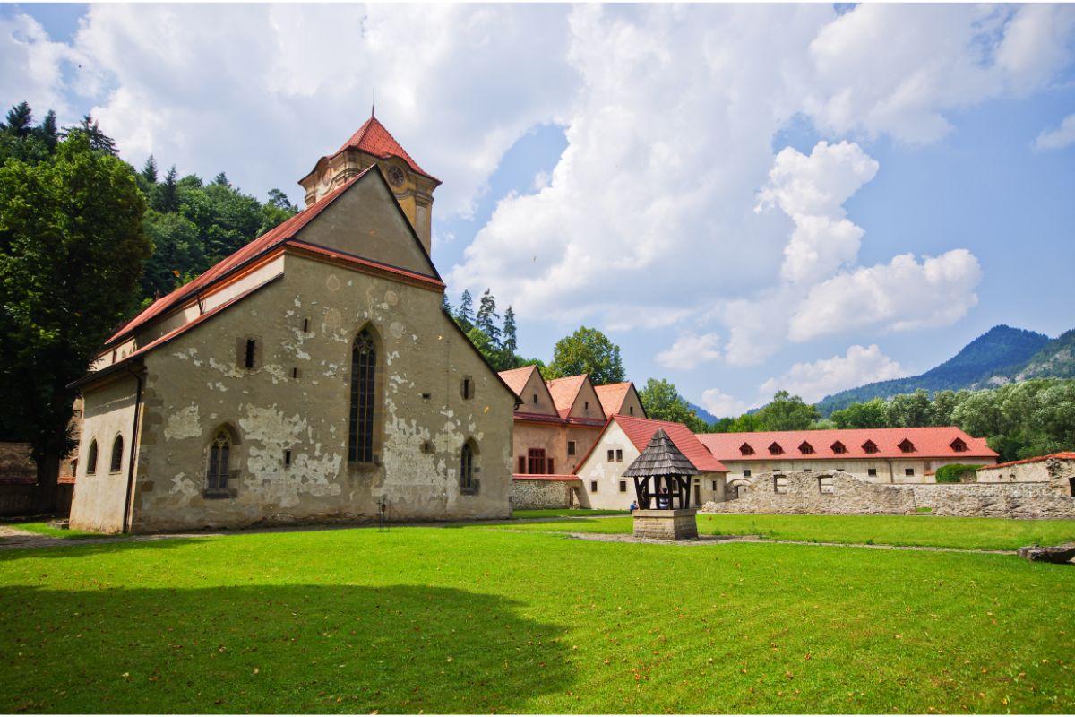 Červený káštor