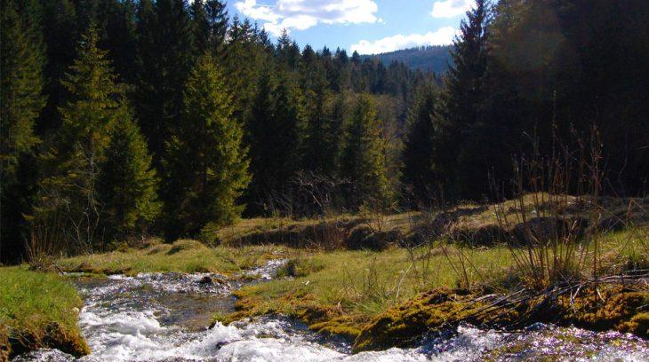 Jazierske travertíny – liečivý zvuk vody