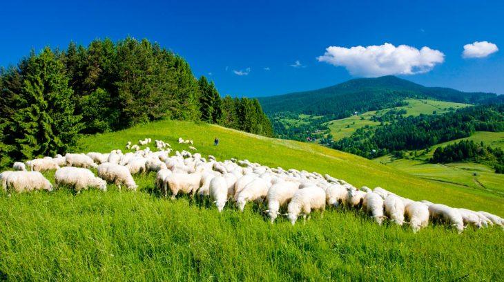 Valčianska dolina spojila prírodu a komerčnú zábavu