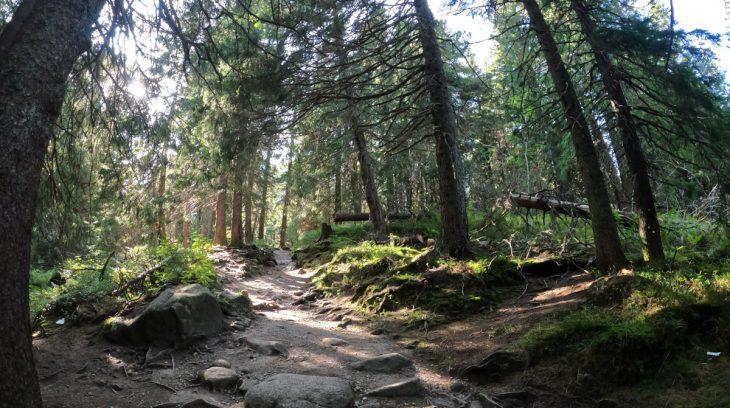 Tatranský chodníček